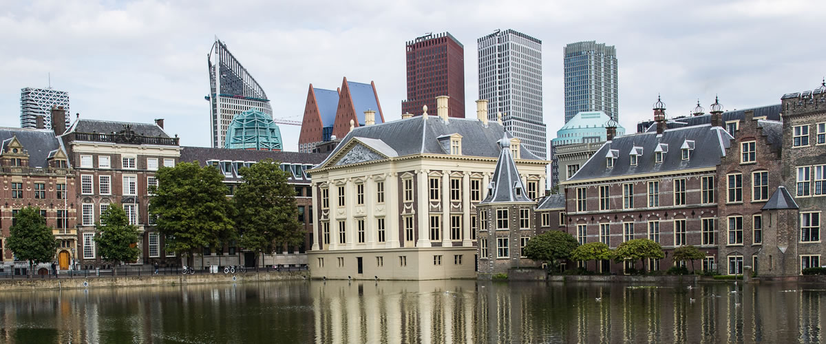 The Hague City